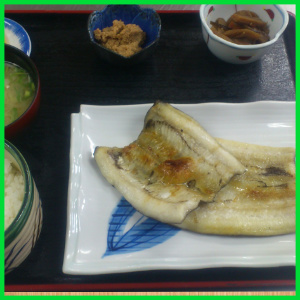黒ハモ焼き定食
